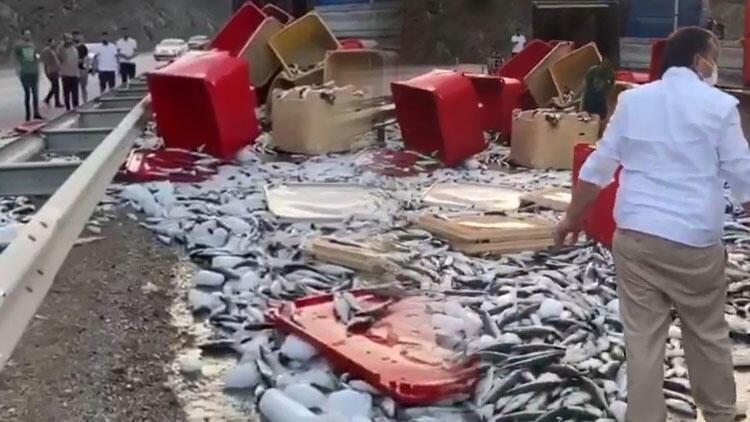 TIR'ın kapağı açıldı, tonlarca balık yola saçıldı
