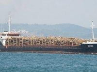 Türk yük gemisi Yunan adasında karaya oturdu