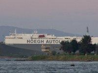 180 metrelik Ro-Ro gemisi Tuzla'da karaya oturdu
