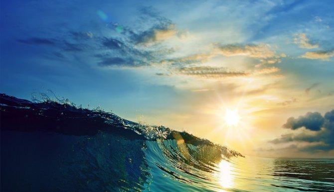 dunya-okyanus-gunu1-001.jpg