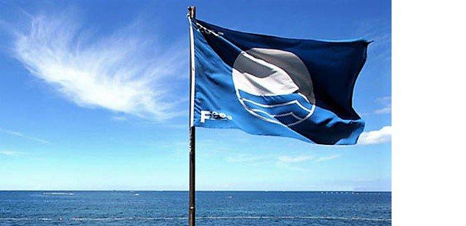 mavi-bayrak-001.jpg